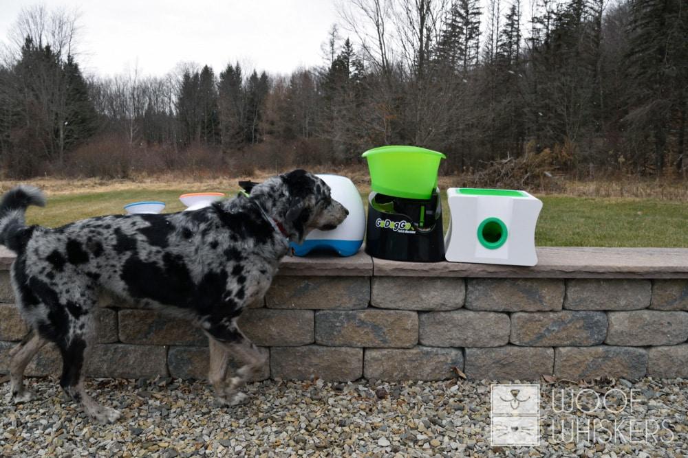 kartoffel checking dog ball launchers