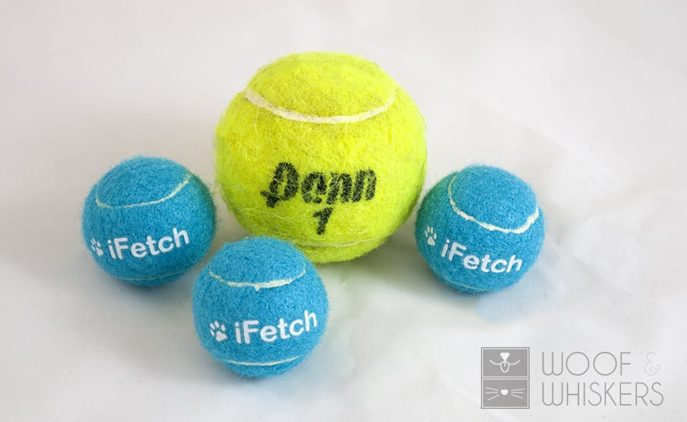 ifetch dog ball size comparison