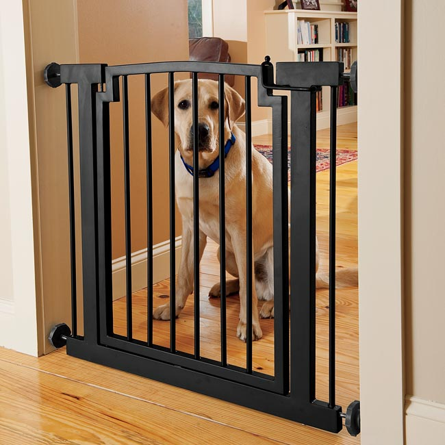 dog gates for house. Dog Behind Gate Gates For House D