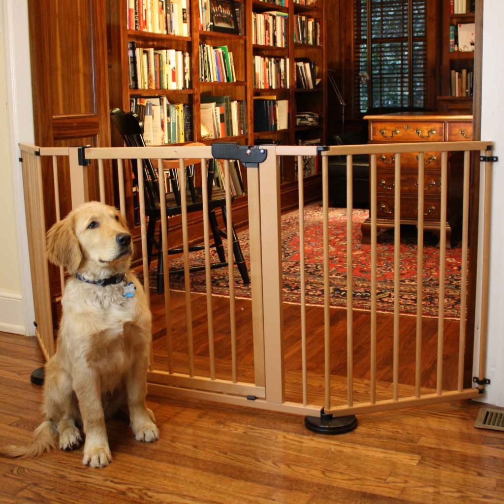 How To Keep Your Dog Out Of The Living Room