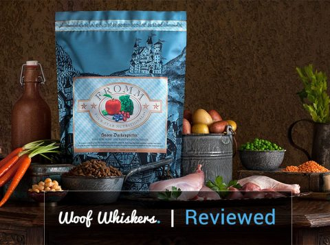 Fromm dog food review