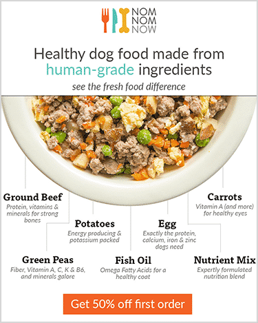 NomNomNow dog food