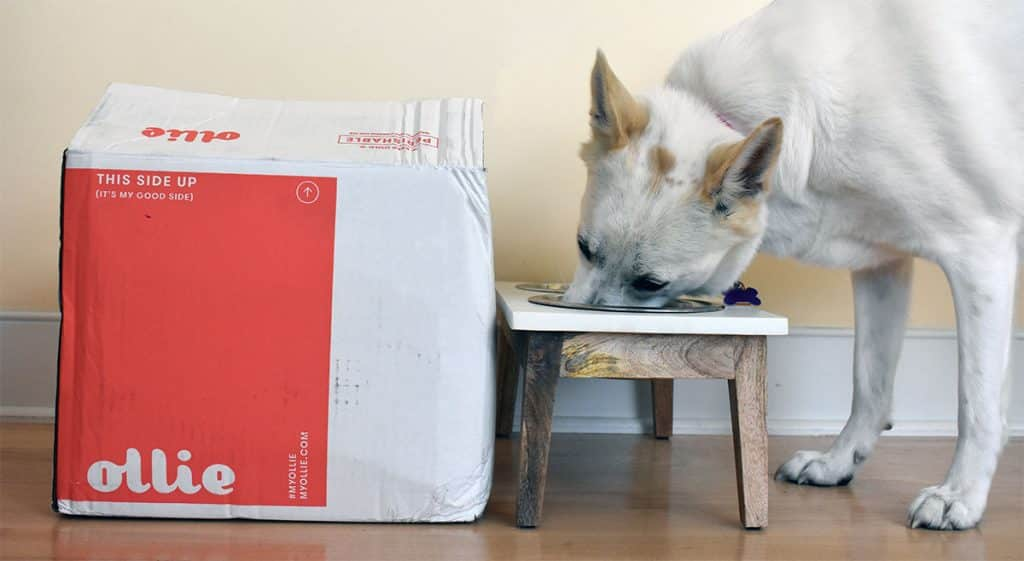 Unboxing my first Ollie order