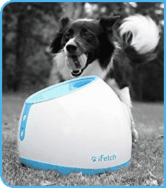 iFetch Ball Thrower