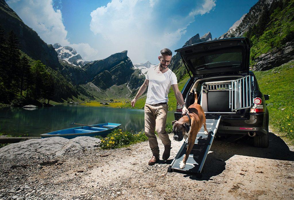 easysteps šuns automobilio rampa