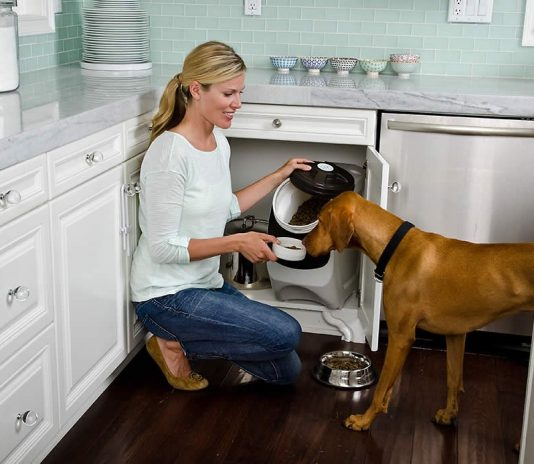 best-dry-dog-food-storage-containers