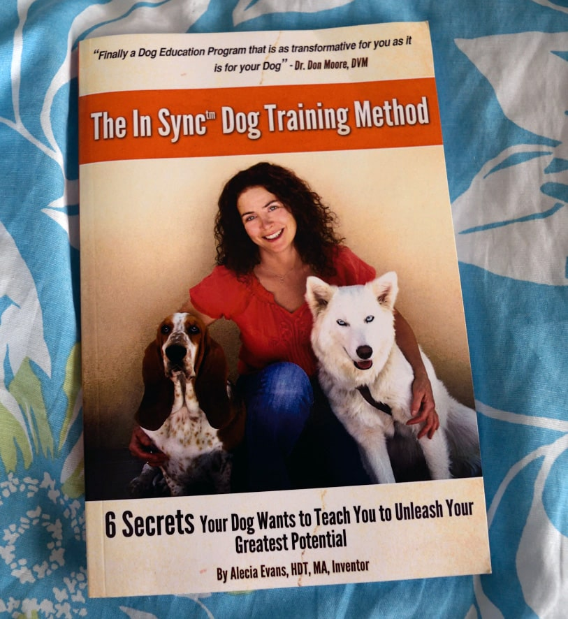 in sync book