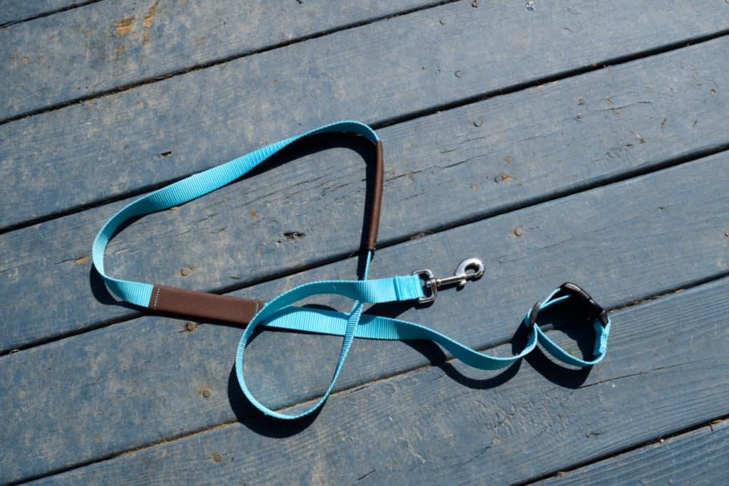 walk in sync leash