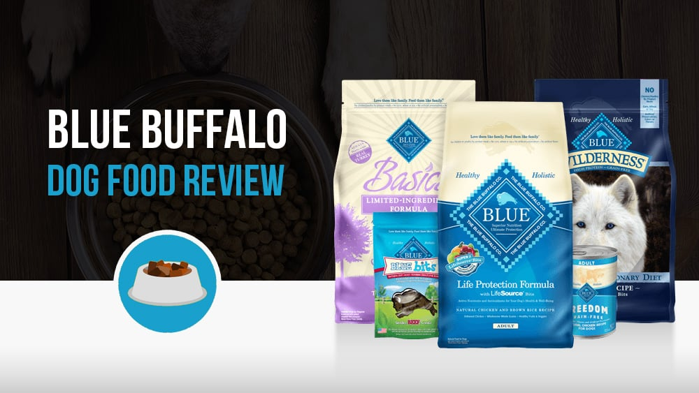 Blue Buffalo Dog Food Review Woof Whiskers