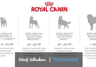 royal canin dog food review