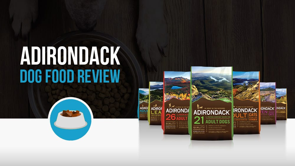 Adirondack dog food review