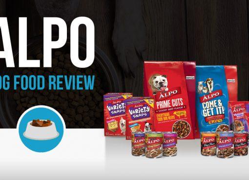 ALPO dog food review