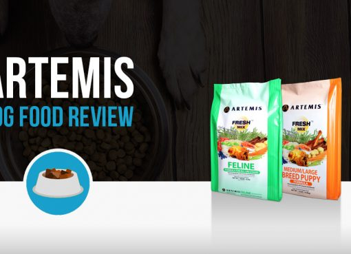 Artemis Dog Food review