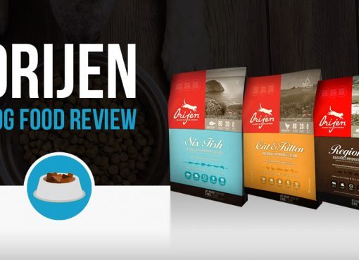 Orijen dog food review