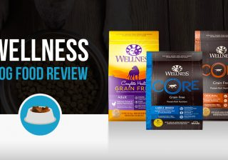 Wellness Dog Food review