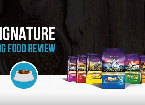 Zignature dog food review