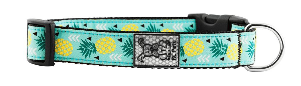 RC Pets collar