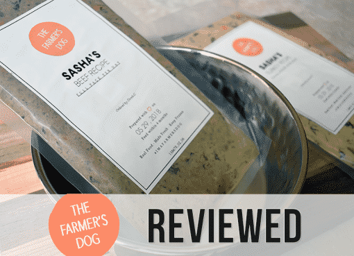 The Farmer's Dog review