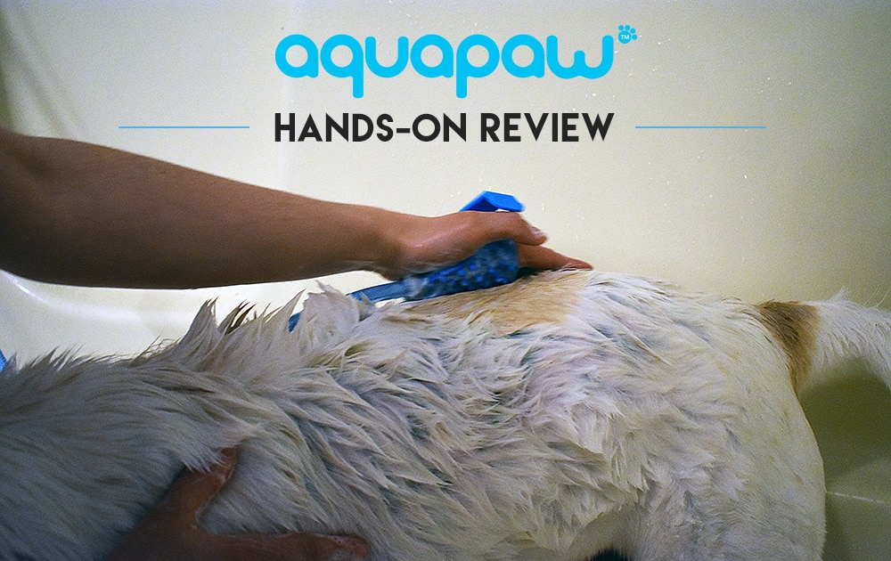 Aquapaw review