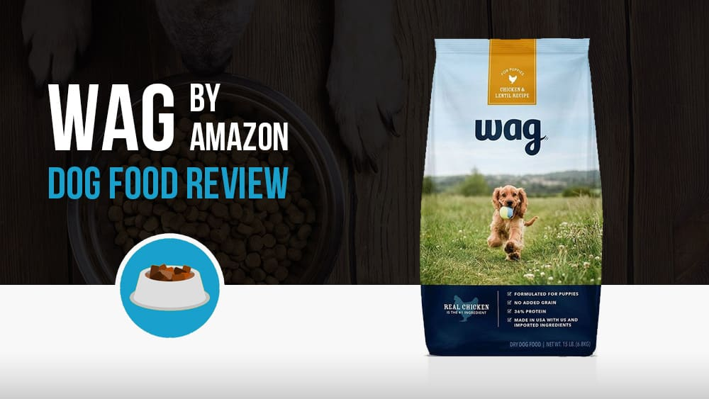 Wag by Amazon dog food review