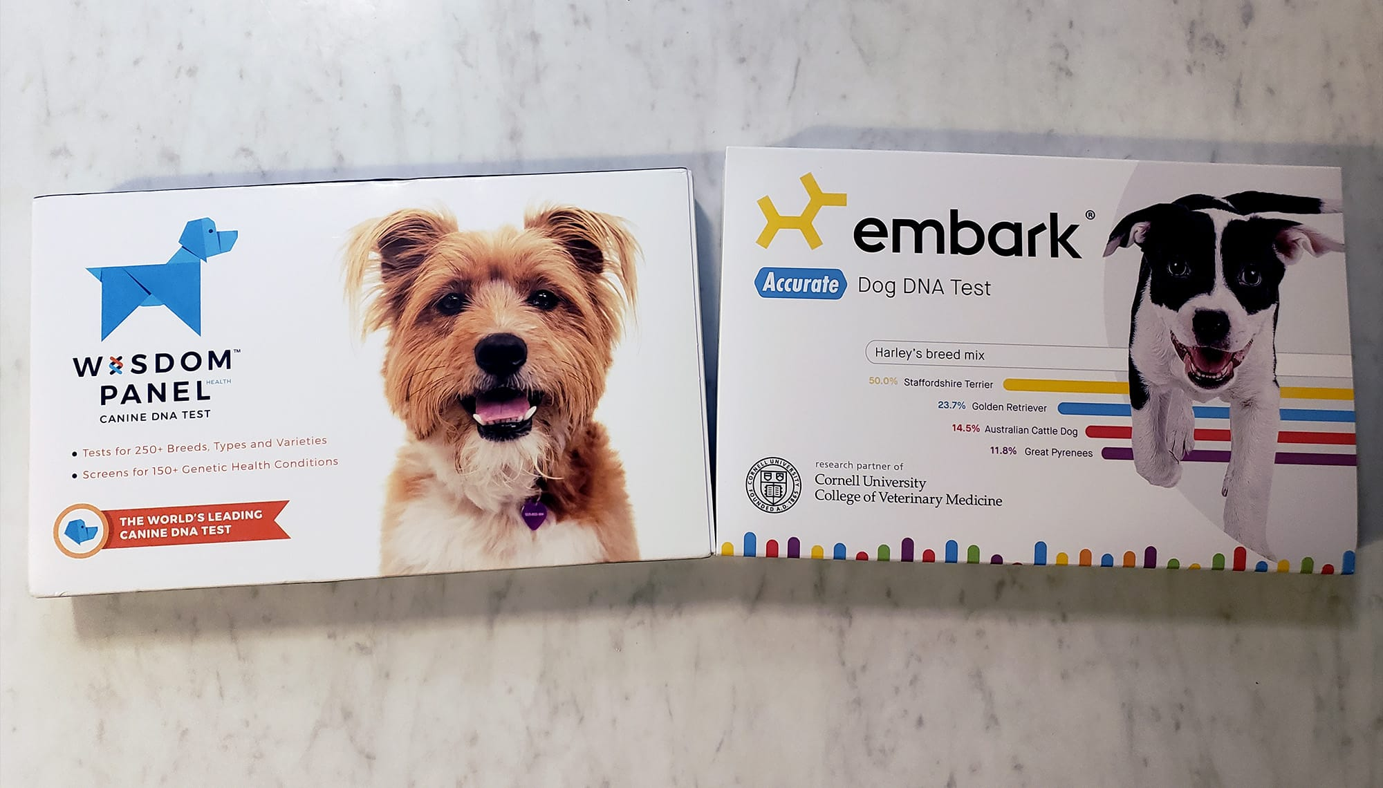 embark vs wisdom panel