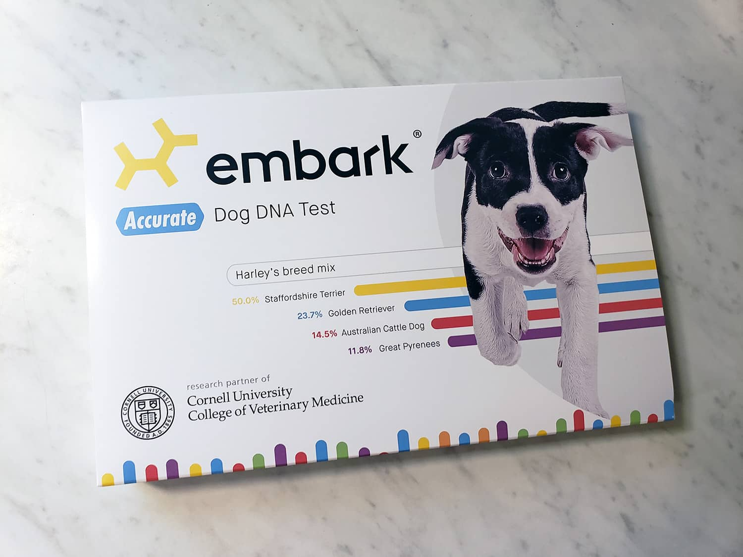 embark dna kit