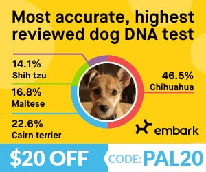 Embark Vet DNA test