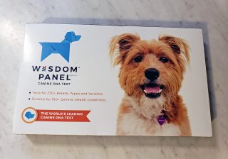 wisdom panel dna review