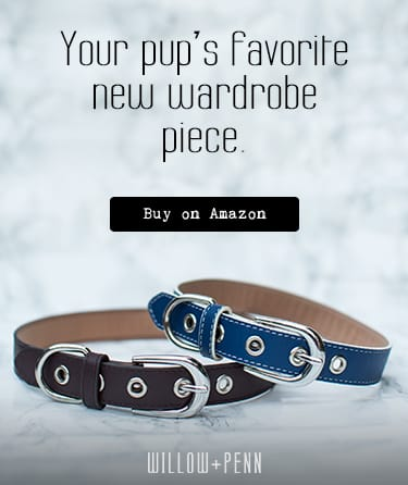 Willow + Penn dog collars