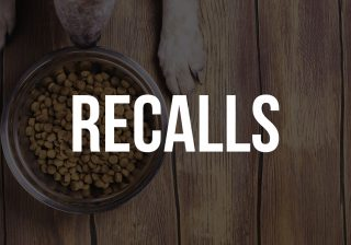 dog food recalls