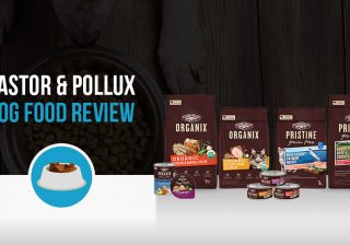 Castor and Pollux review