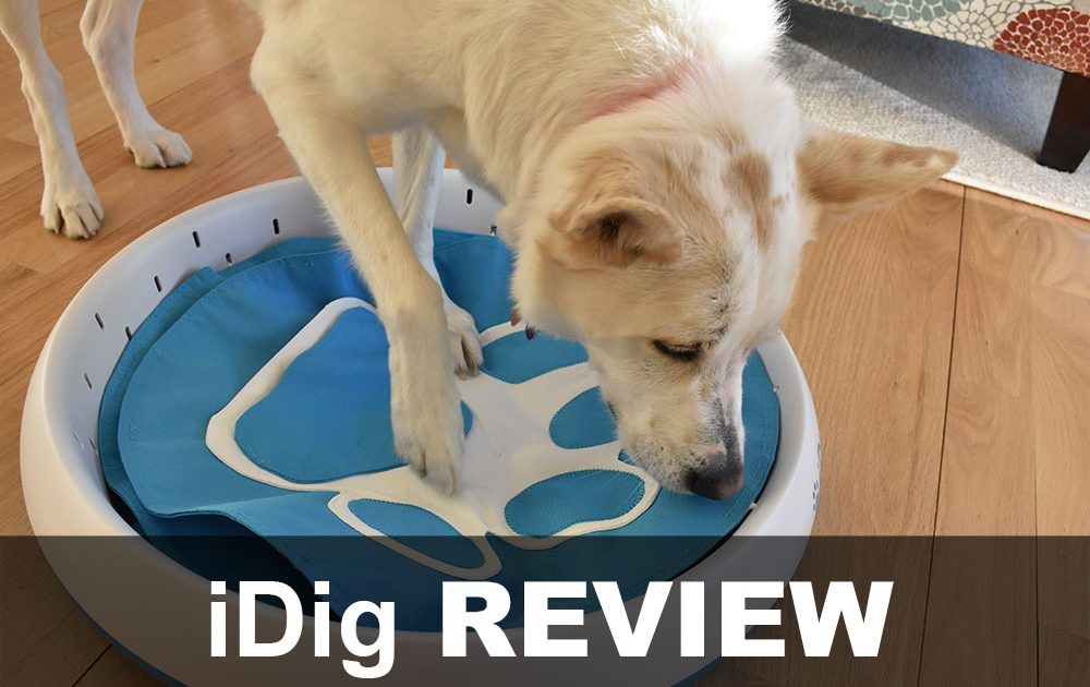 iDig digging toy review