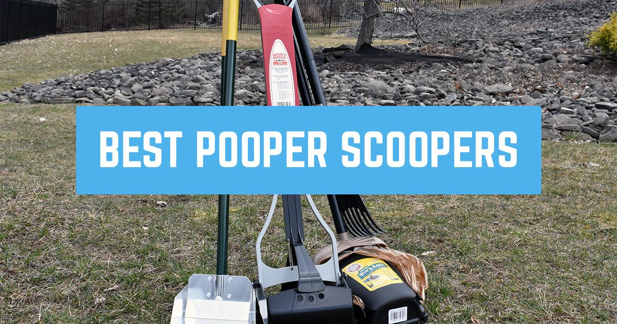 best pooper scooper for dogs