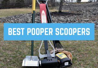 best pooper scooper for dogs