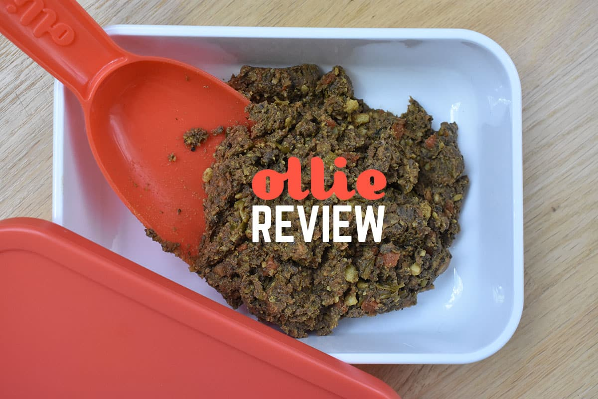Ollie Dog Food Review 2020 Hands On Woof Whiskers