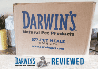 Darwin's raw dog food review