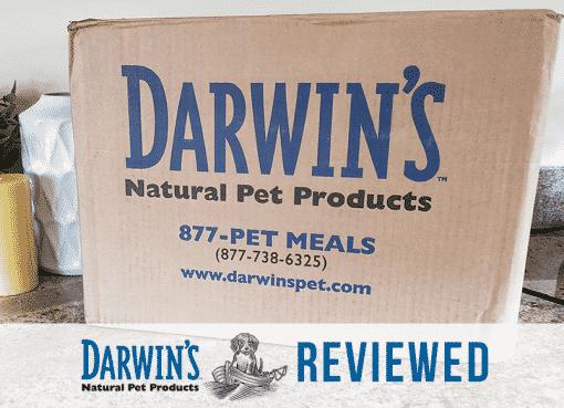 Darwin's raw dog food review
