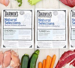 Darwin S Natural Dog Food Review Raw Dog Food Delivered