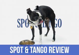 spot tango dog food review
