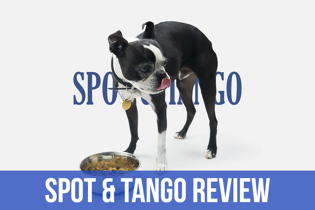spot tango dog food review