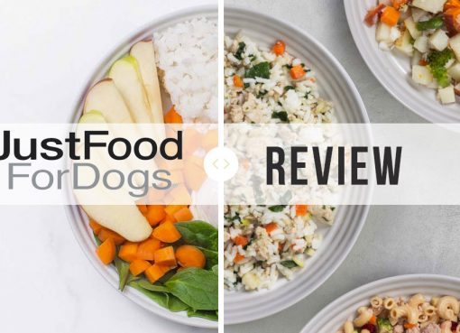 JustFoodForDogs review