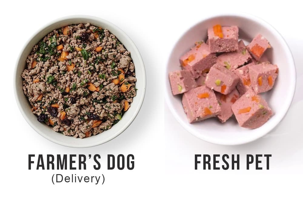 fresh pet food