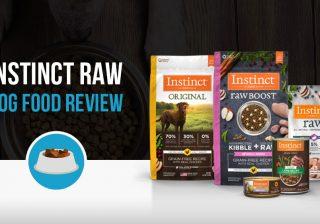 Instinct dog food review