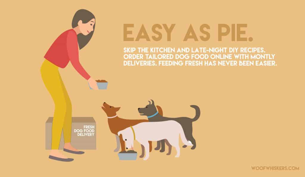 why fresh dog food is convenient