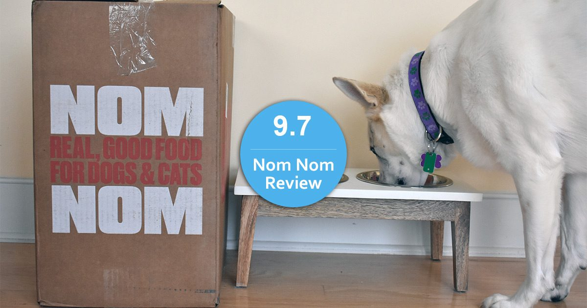 Nom Nom dog food review