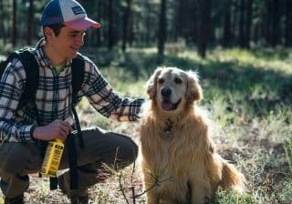 Permethrin for dogs