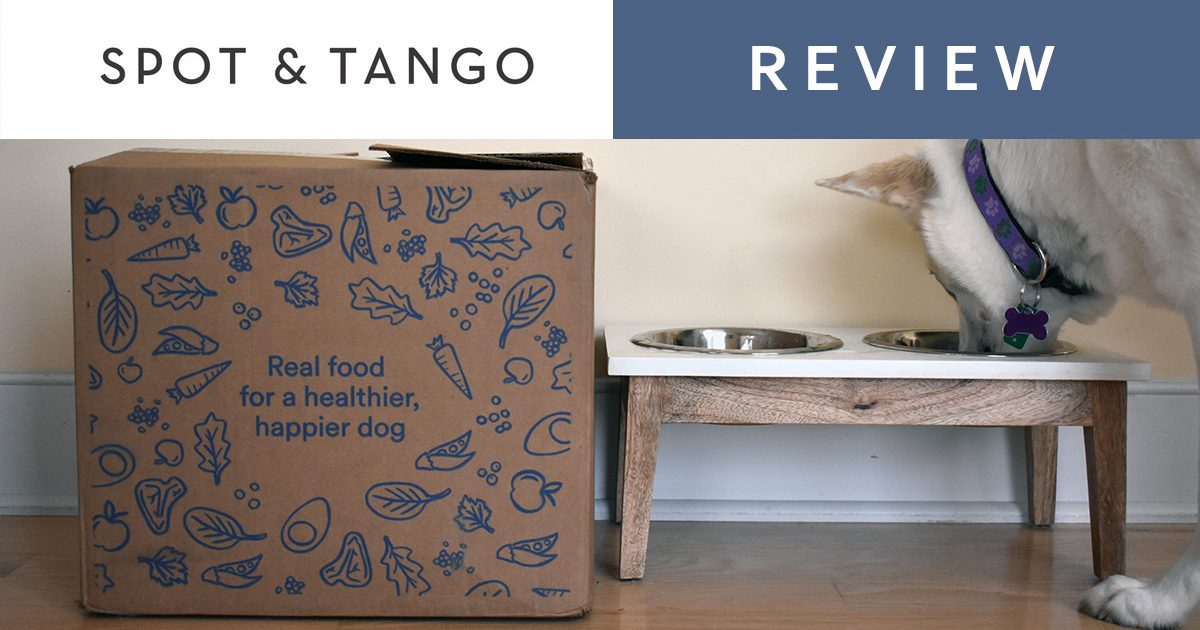 spot and tango review