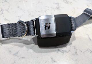 fi smart dog collar review