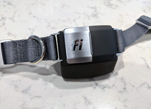 fi smart dog collar review